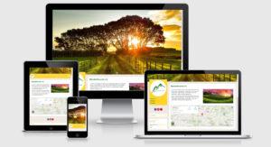 Vereinswebsite zum Fixpreis